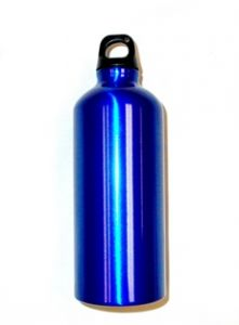 Bison 0.6 L Aluminum Water Bottle (Blue)