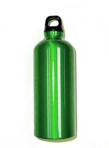 Bison 0.6 L Aluminum Water Bottle (Green)