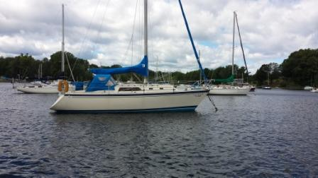 Sea Dog Boating Solutions Blog - Sprung a Leak on our sailboat